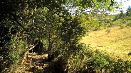 Ouverture d'un sentier de randonnée dans la Drôme