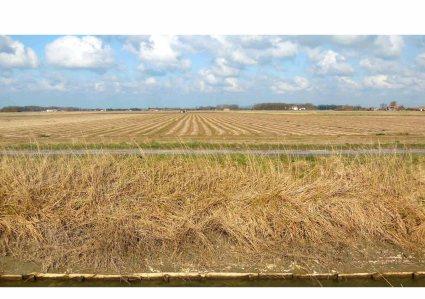 Absence de l'eau dans la plaine canalisée